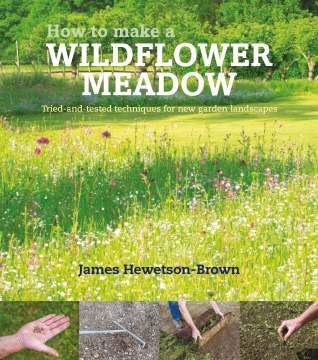 WildflowerMeadow266x470.5mmFRTsm